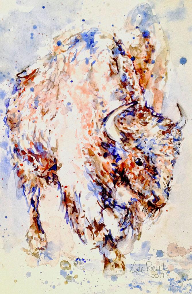 Winter Buffalo in Yellowstone